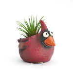 Baby Cardinal Bird Mini Planter