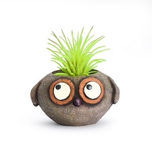 Baby Brown Owl Mini Planter (Plants not included)