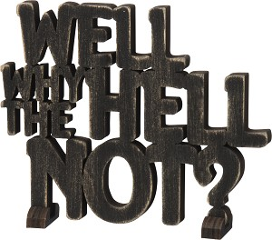 Word Art - Well Why The Hell Not? (BLK)